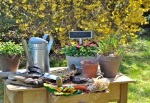Supplies & Tools Wangari Gardens japanese gardening tools berkeley